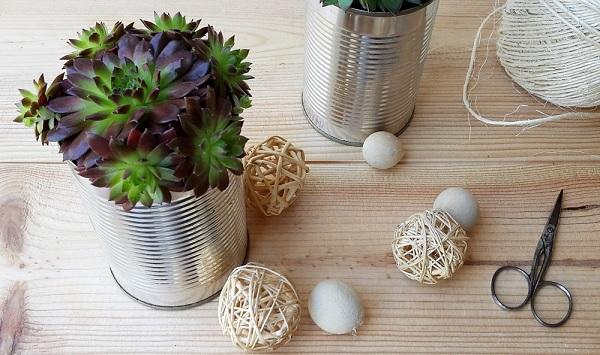 Succulentes en pot, des cadeaux originaux pour vos invités